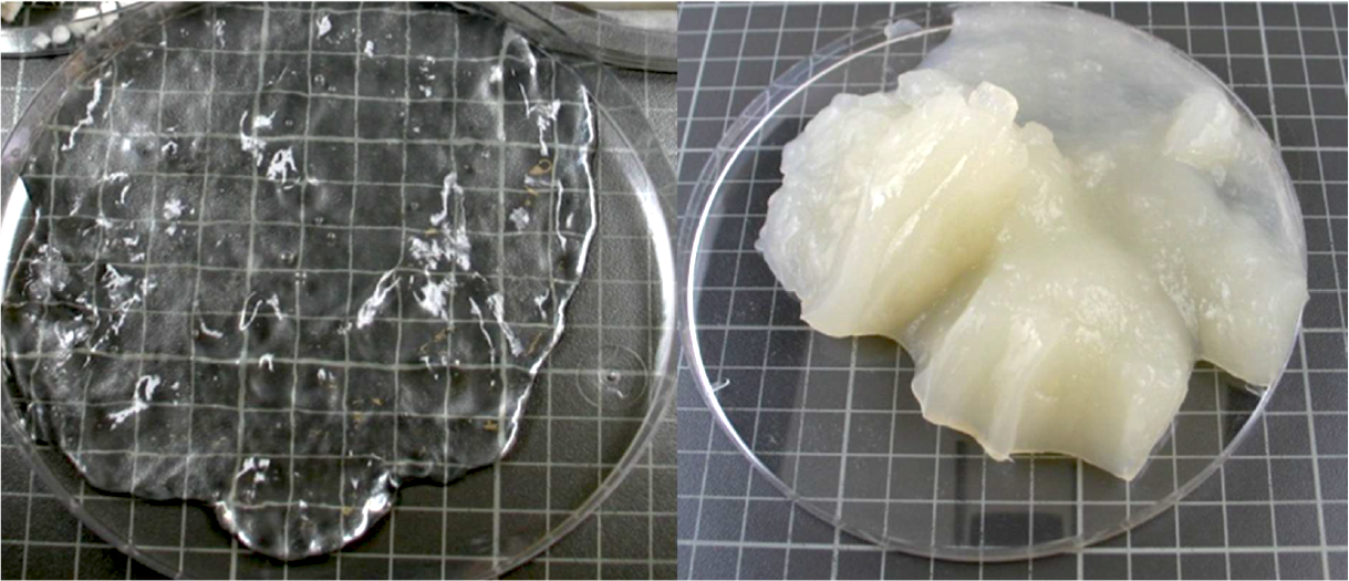 Figure. Cellulose nanofibrils produced by TEMPO mediated oxidation (left) and carboxymethylation as the pre-treatment. (Source: Tiina Pöhler, et al., VTT (2010))